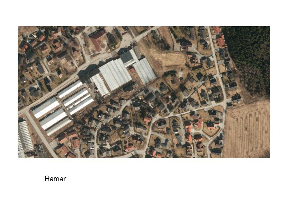 Hamar