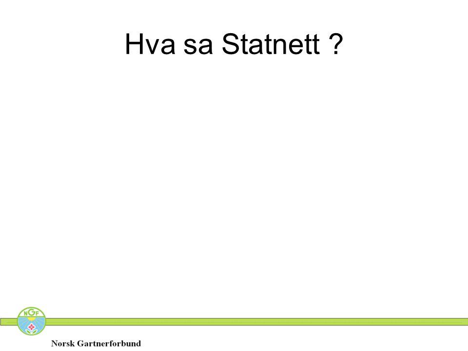Hva sa Statnett ?