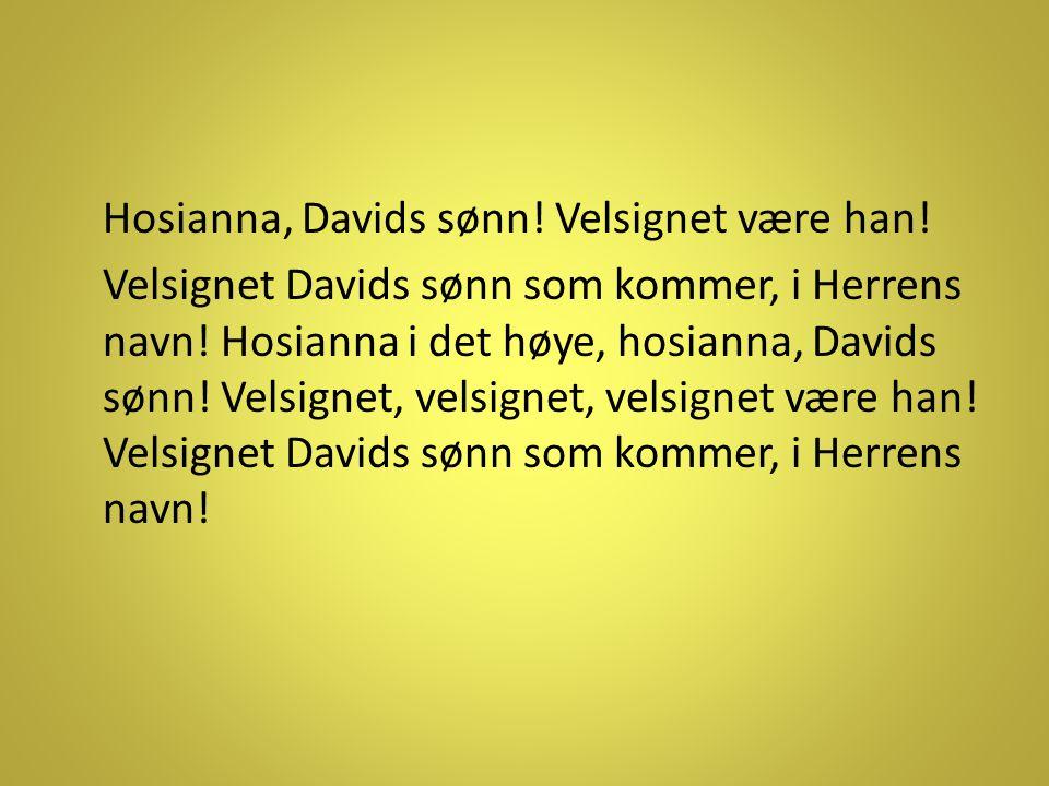 Hosianna, Davids sønn! Velsignet være han! Velsignet Davids sønn som kommer, i Herrens navn! Hosianna i det høye, hosianna, Davids sønn! Velsignet, ve