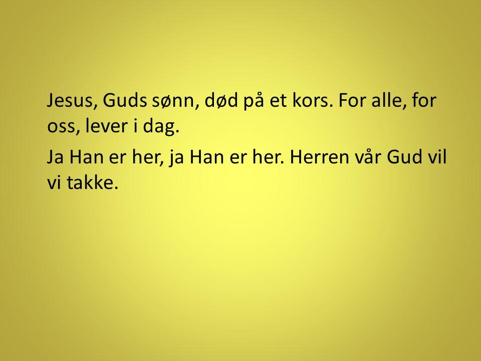 Jesus, Guds sønn, død på et kors. For alle, for oss, lever i dag. Ja Han er her, ja Han er her. Herren vår Gud vil vi takke.