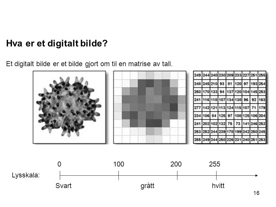 16 Hva er et digitalt bilde? Et digitalt bilde er et bilde gjort om til en matrise av tall. Lysskala: 0 100 200 255 Svart grått hvitt