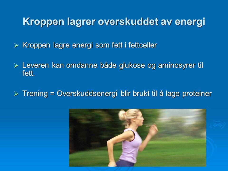 Kroppen lagrer overskuddet av energi  Kroppen lagre energi som fett i fettceller  Leveren kan omdanne både glukose og aminosyrer til fett.  Trening