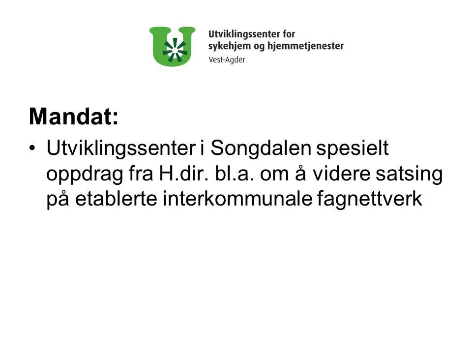 Mandat: •Utviklingssenter i Songdalen spesielt oppdrag fra H.dir.