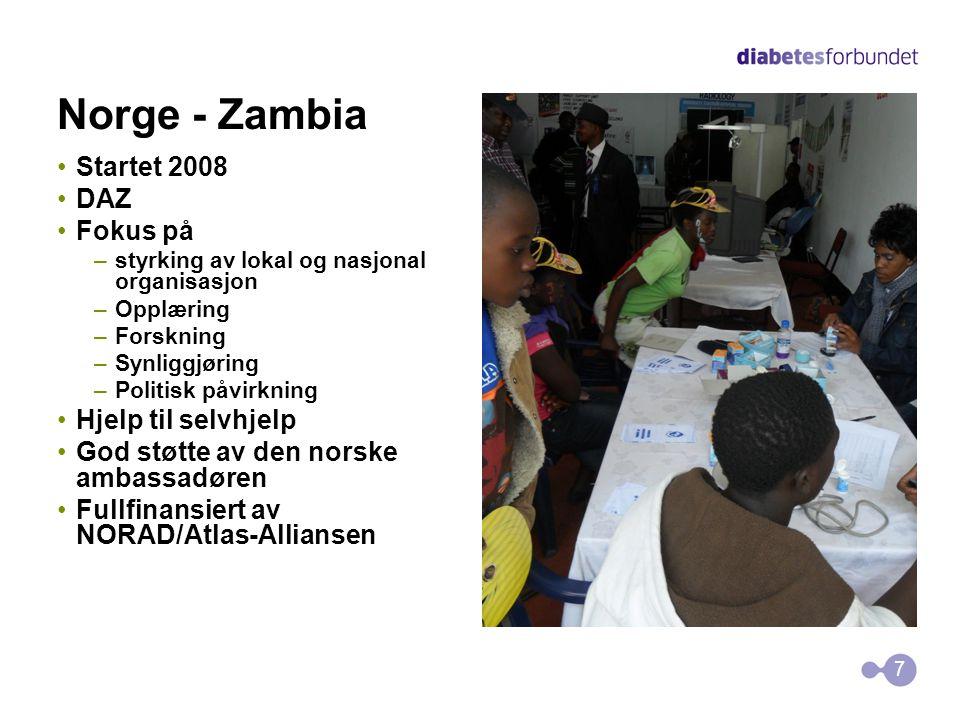 Norge - Zambia •Startet 2008 •DAZ •Fokus på –styrking av lokal og nasjonal organisasjon –Opplæring –Forskning –Synliggjøring –Politisk påvirkning •Hje