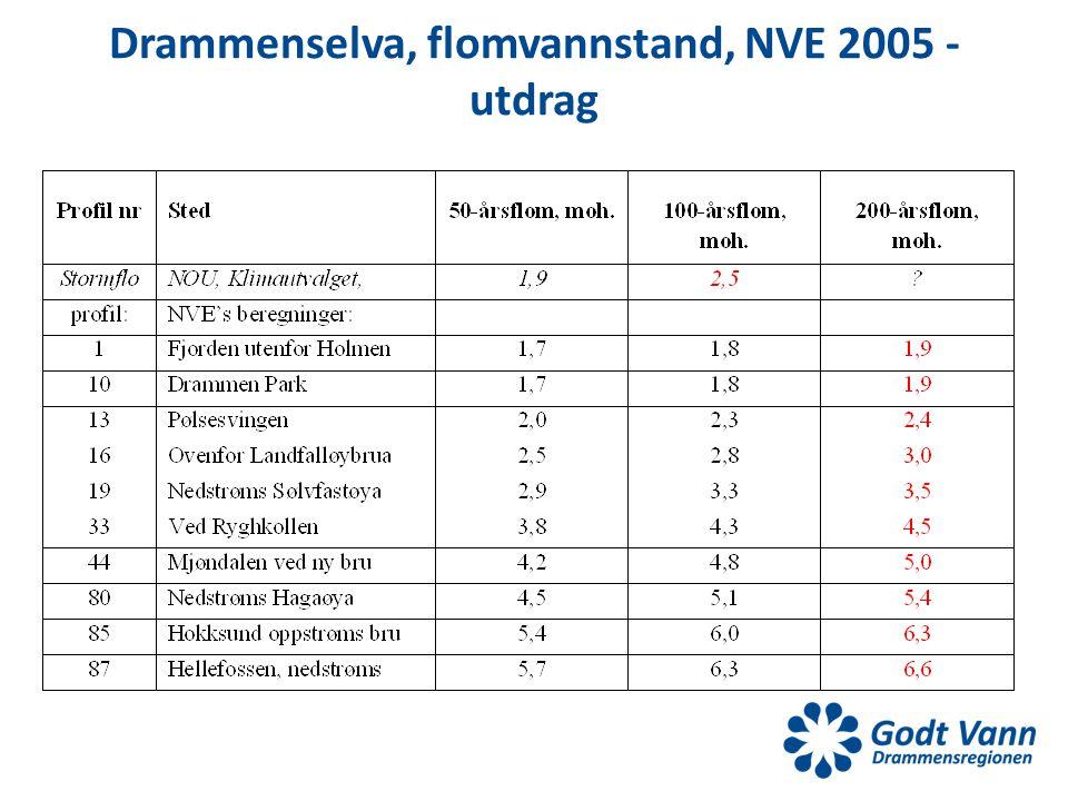Drammenselva, flomvannstand, NVE 2005 - utdrag