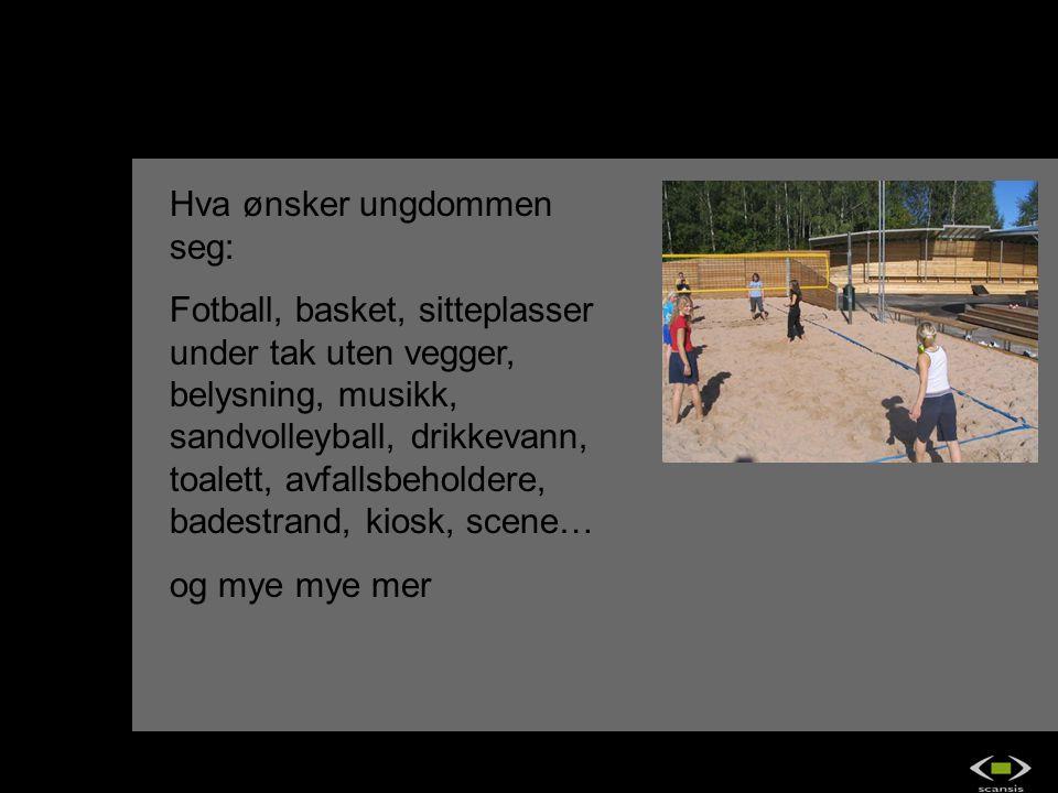 Hva ønsker ungdommen seg: Fotball, basket, sitteplasser under tak uten vegger, belysning, musikk, sandvolleyball, drikkevann, toalett, avfallsbeholder