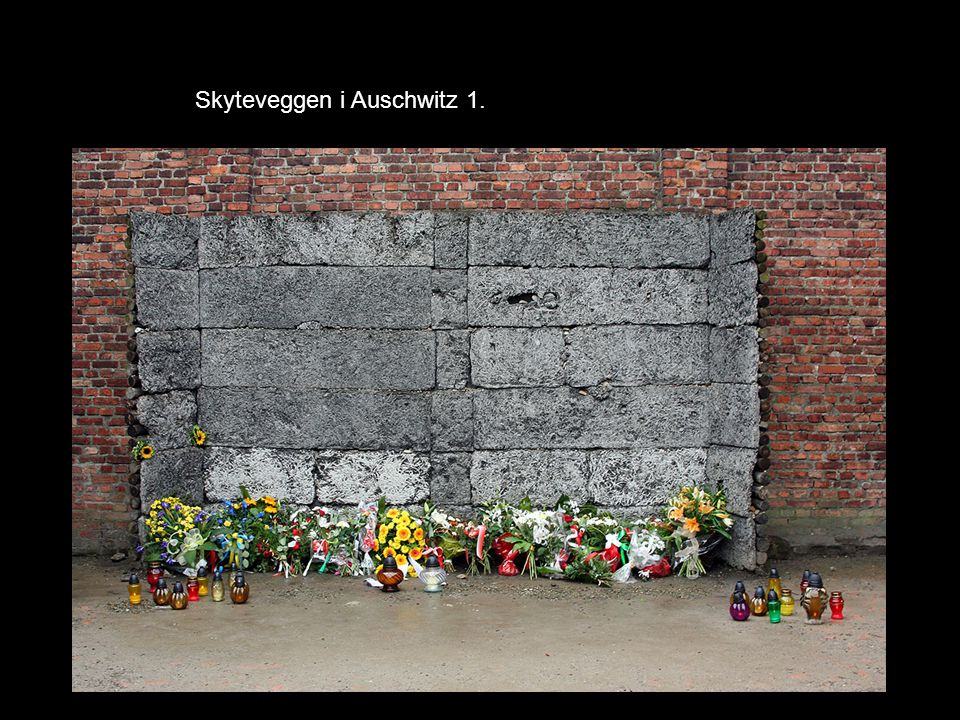 Skyteveggen i Auschwitz 1.