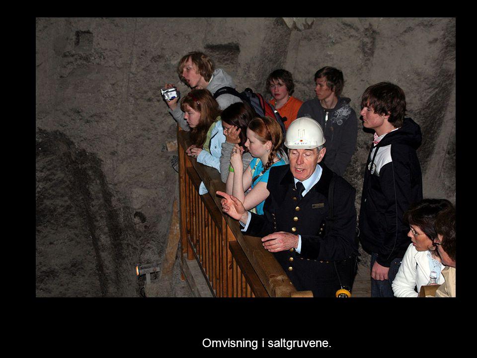 Omvisning i saltgruvene.