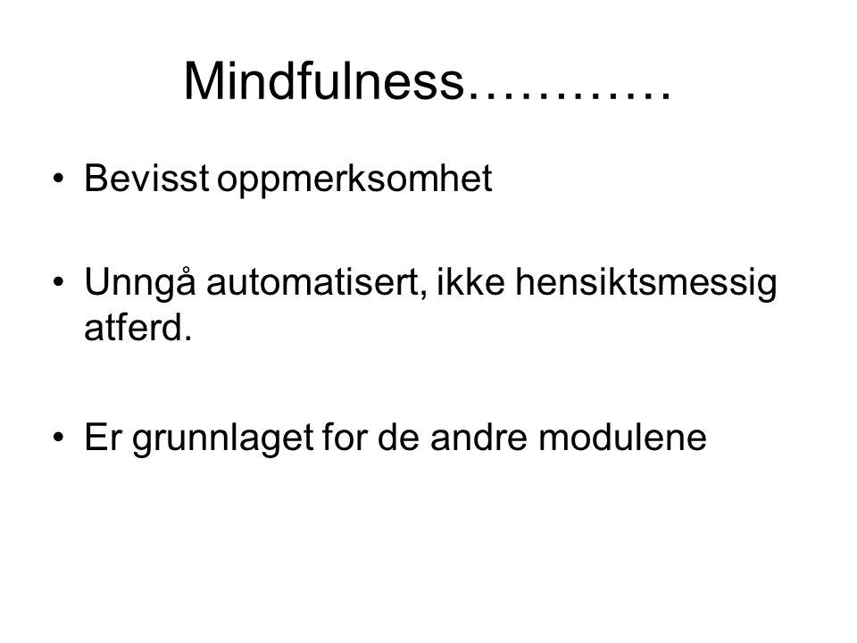Mindfulness………… •Bevisst oppmerksomhet •Unngå automatisert, ikke hensiktsmessig atferd. •Er grunnlaget for de andre modulene