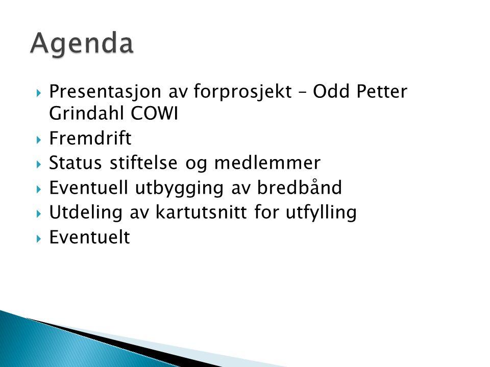  Presentasjon av forprosjekt – Odd Petter Grindahl COWI  Fremdrift  Status stiftelse og medlemmer  Eventuell utbygging av bredbånd  Utdeling av kartutsnitt for utfylling  Eventuelt