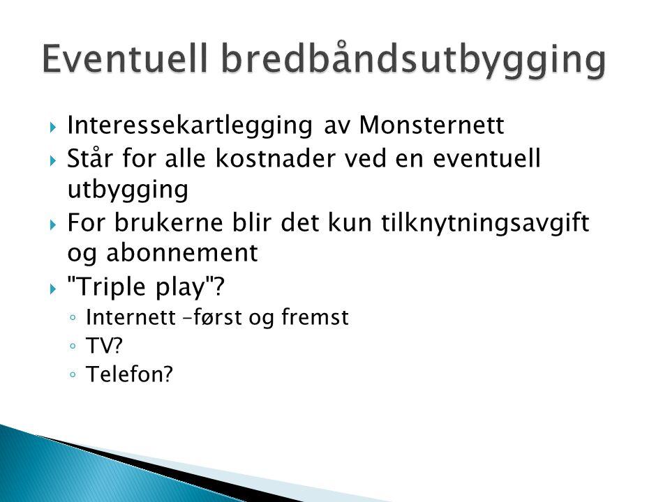  Interessekartlegging av Monsternett  Står for alle kostnader ved en eventuell utbygging  For brukerne blir det kun tilknytningsavgift og abonnement  Triple play .