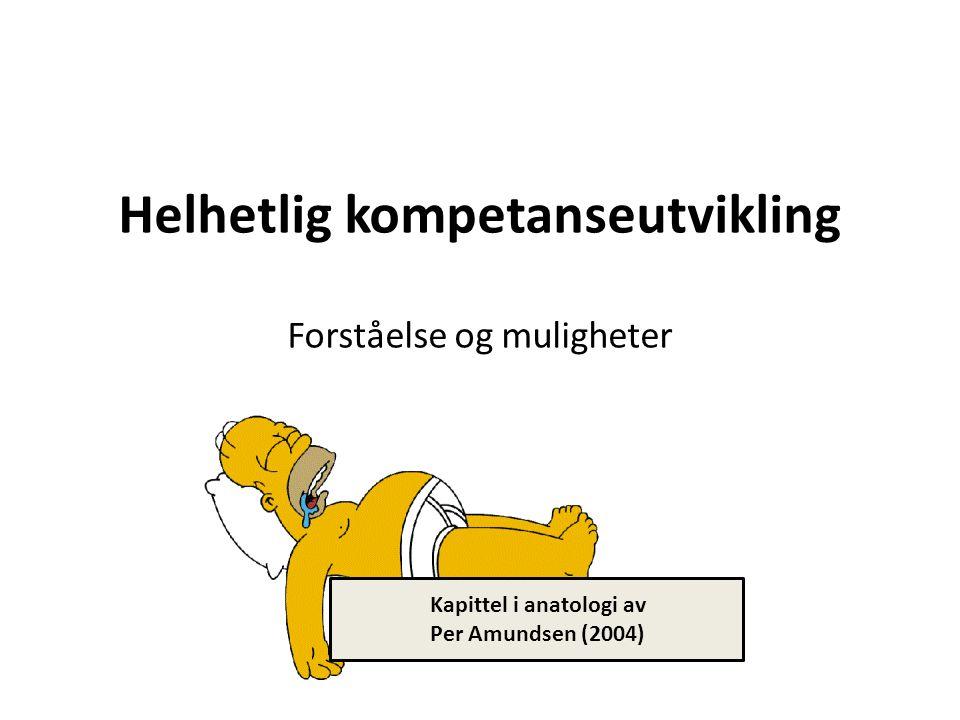 Helhetlig kompetanseutvikling Forståelse og muligheter Kapittel i anatologi av Per Amundsen (2004)