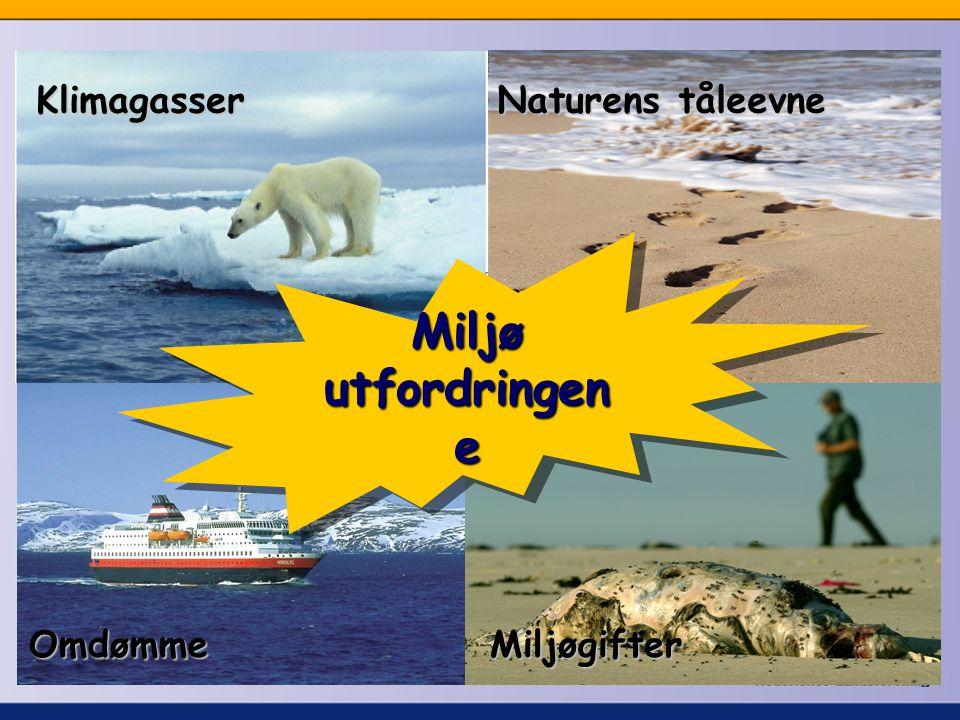 Miljø utfordringen e Klimagasser MiljøgifterOmdømme Naturens tåleevne