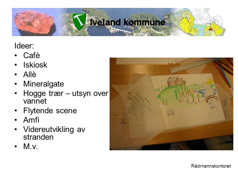 Ideer: •Cafè •Iskiosk •Allè •Mineralgate •Hogge trær – utsyn over vannet •Flytende scene •Amfi •Videreutvikling av stranden •M.v.