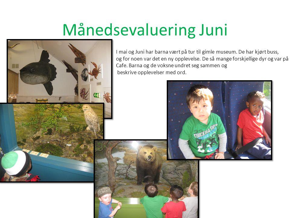 Månedsevaluering Juni I mai og Juni har barna vært på tur til gimle museum.