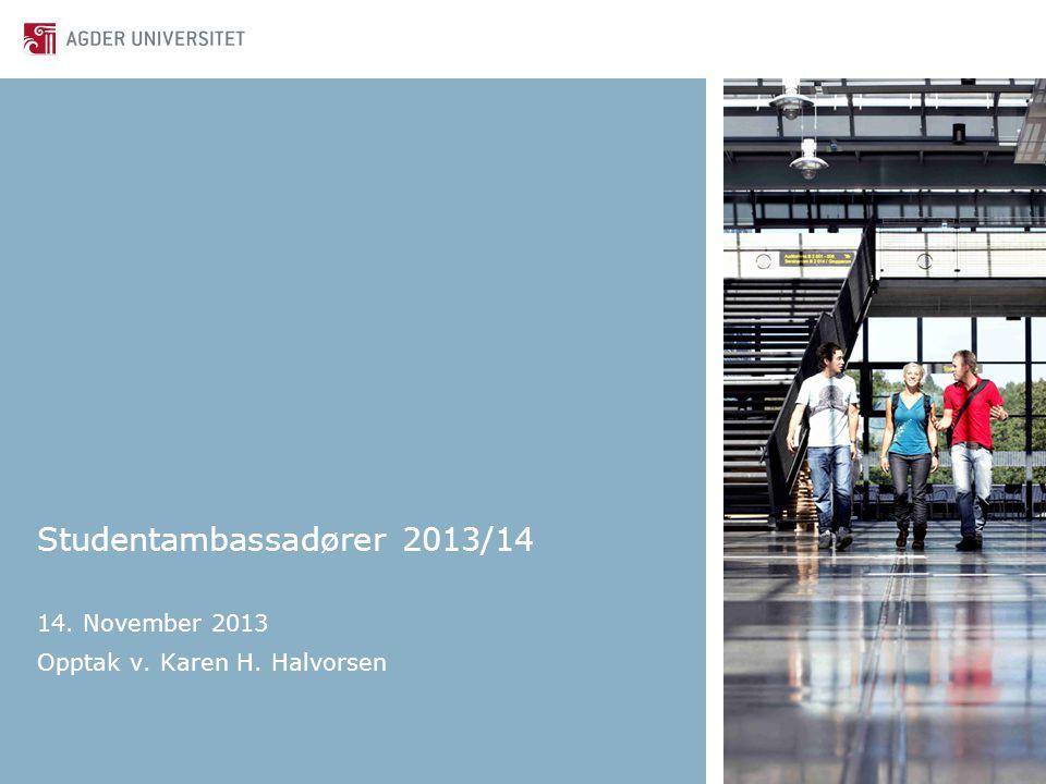 Studentambassadører 2013/14 14. November 2013 Opptak v. Karen H. Halvorsen