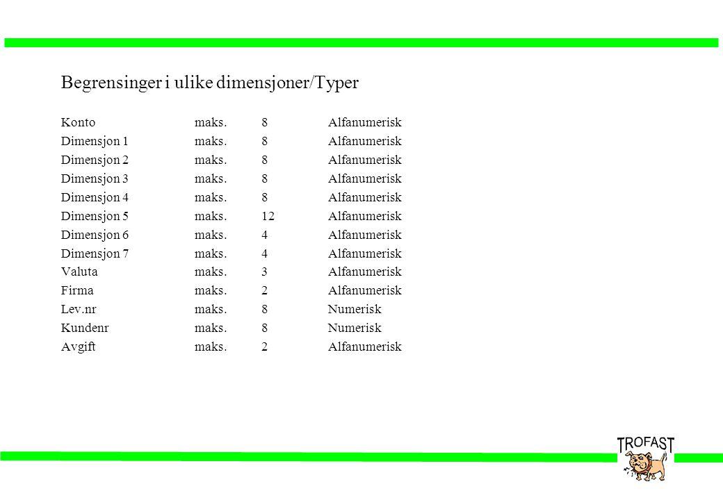 Begrensinger i ulike dimensjoner/Typer Kontomaks.8Alfanumerisk Dimensjon 1maks.8Alfanumerisk Dimensjon 2maks.8Alfanumerisk Dimensjon 3maks.8Alfanumeri