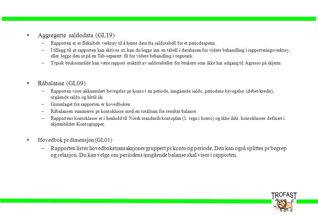 •Aggregerte saldodata (GL19) –Rapporten er et fleksibelt verktøy til å hente data fra saldotabell for et periodespenn. –I tillegg til at rapporten kan