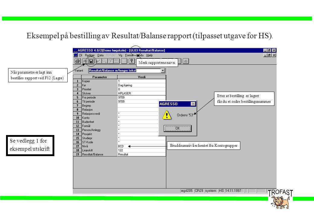 Eksempel på bestilling av Resultat/Balanse rapport (tilpasset utgave for HS). Merk rapportens navn Bruddsumnivåer hentet fra Kontogrupper Når parametr