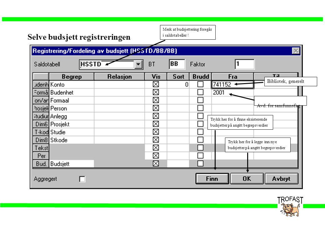 Selve budsjett registreringen Trykk her for å finne eksisterende budsjetter på angitt begrepsverdier Trykk her for å legge inn nye budsjetter på angit