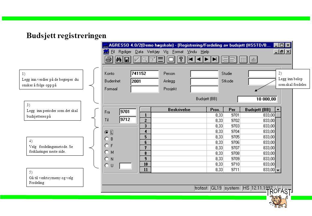Budsjett registreringen 1) Legg inn verdier på de begreper du ønsker å følge opp på 2) Legg inn beløp som skal fordeles 3) Legg inn perioder som det s