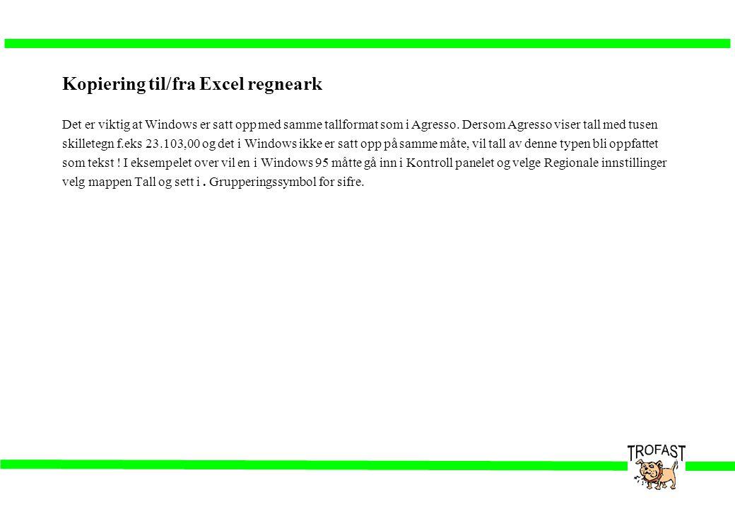 Kopiering til/fra Excel regneark Det er viktig at Windows er satt opp med samme tallformat som i Agresso. Dersom Agresso viser tall med tusen skillete
