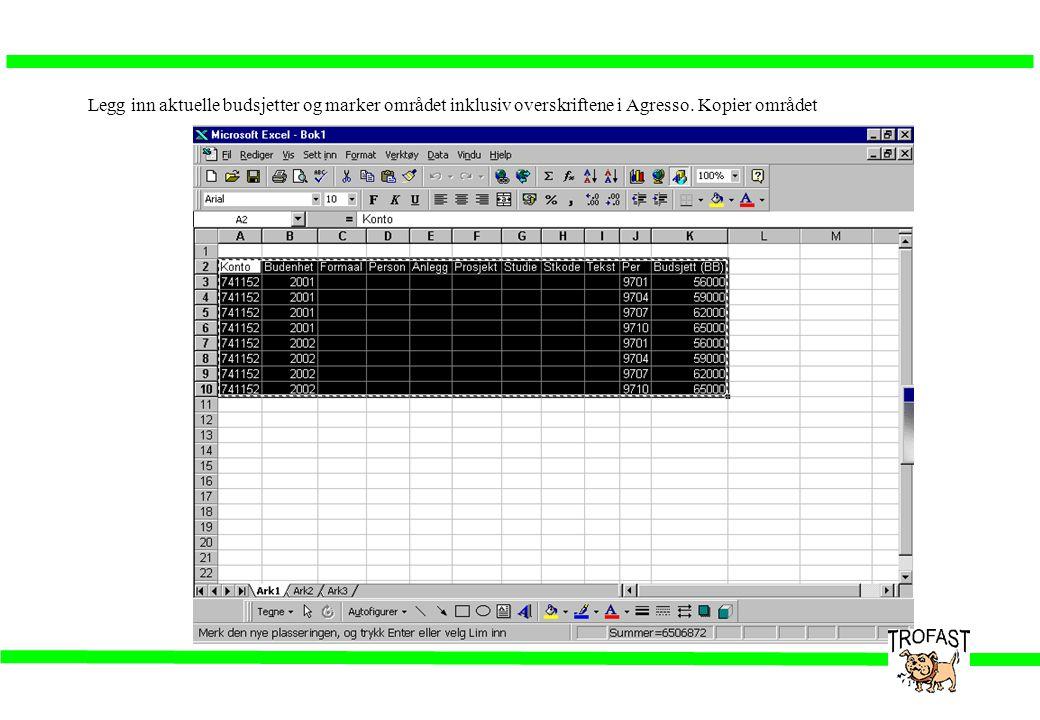 Legg inn aktuelle budsjetter og marker området inklusiv overskriftene i Agresso. Kopier området