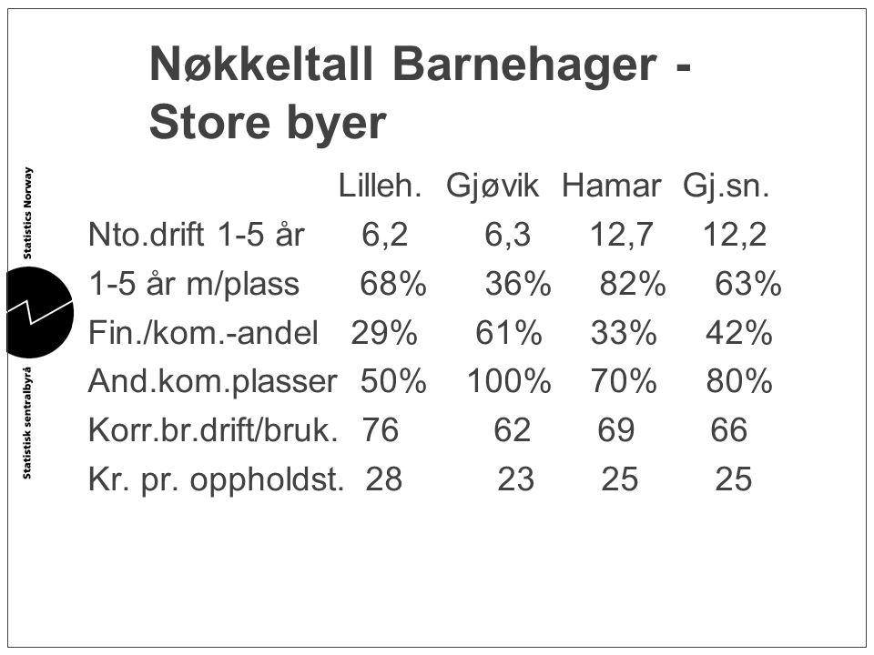 Nøkkeltall Barnehager - Store byer Lilleh. Gjøvik Hamar Gj.sn. Nto.drift 1-5 år 6,2 6,3 12,7 12,2 1-5 år m/plass 68% 36% 82% 63% Fin./kom.-andel 29% 6