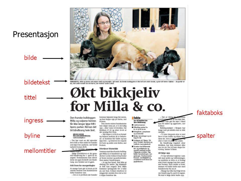 bilde bildetekst tittel ingress byline mellomtitler faktaboks spalter Presentasjon