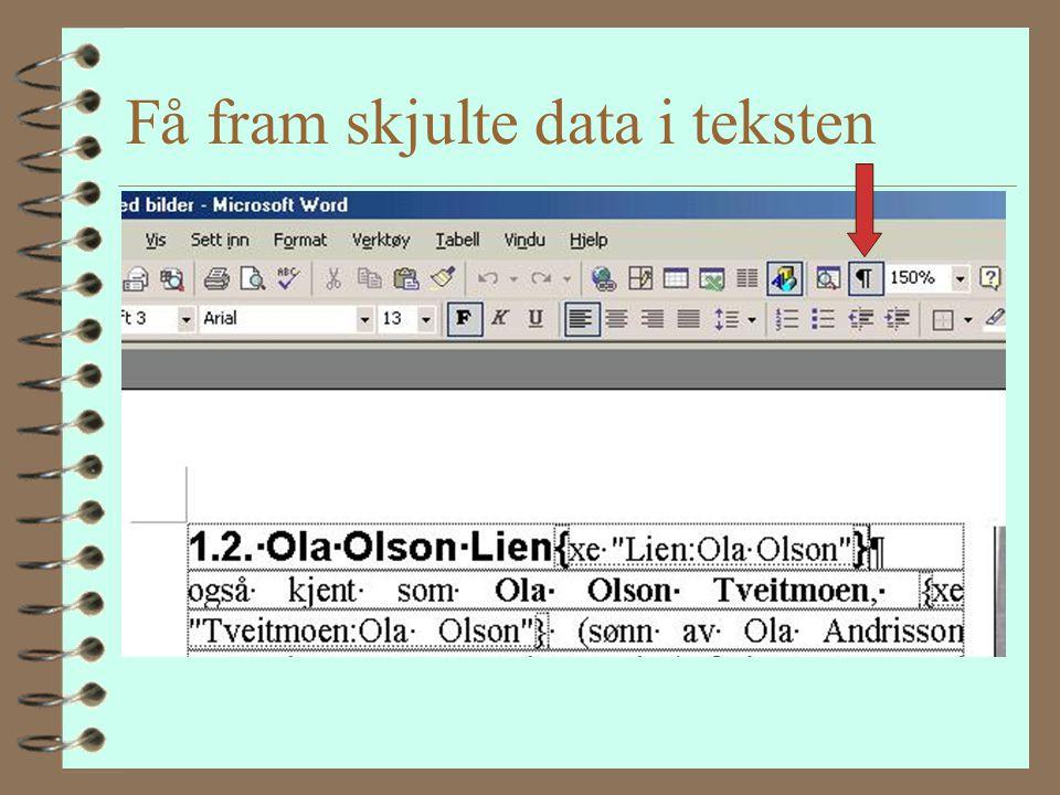 Hvordan få til Navneregister 4 1.2. Ola Olson Lien 4 også kjent som Ola Olson Tveitmoen, (sønn av Ola Andrisson Tørstad og Gro Knutsdotter Lien) født