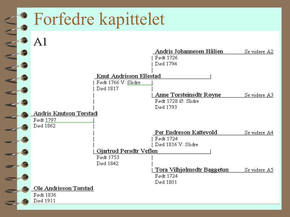 Boka inneholder 4F4Forteller om Valdres, kommunen og gården 4H4Hovedpersonene 4f4forfedrene til de fire hovedpersonene 4S4Slektsoppstillingen med bild