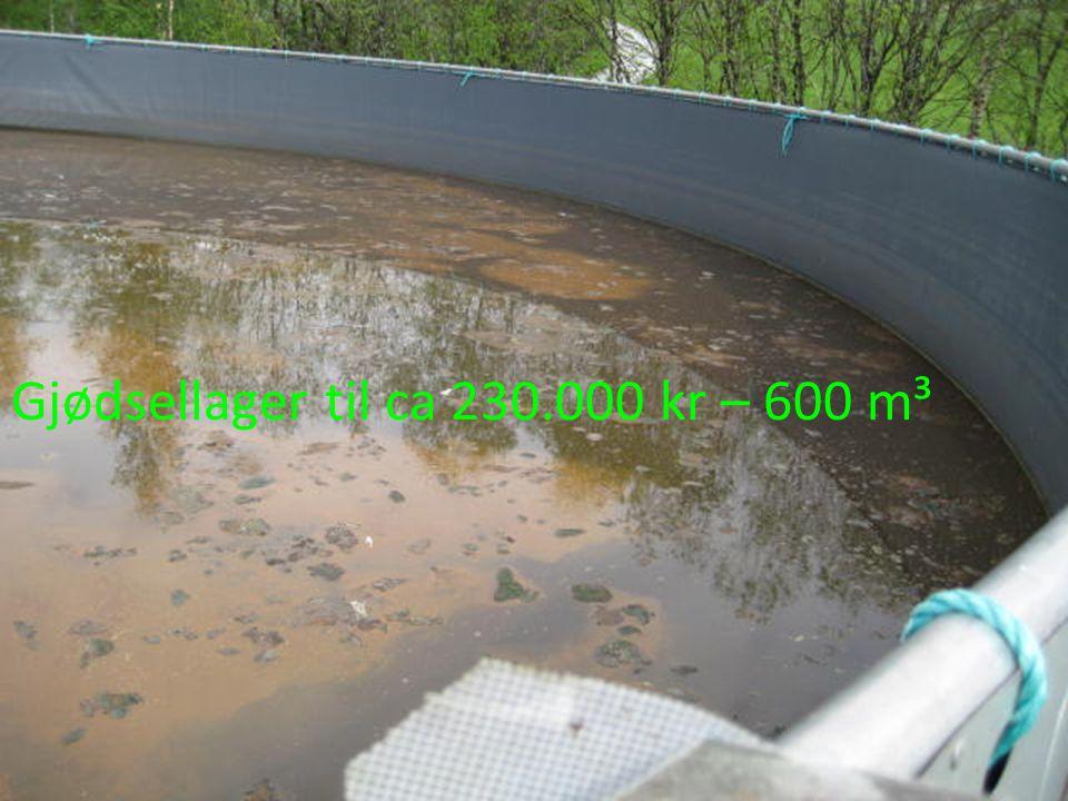 Gjødsellager til ca 230.000 kr – 600 m³