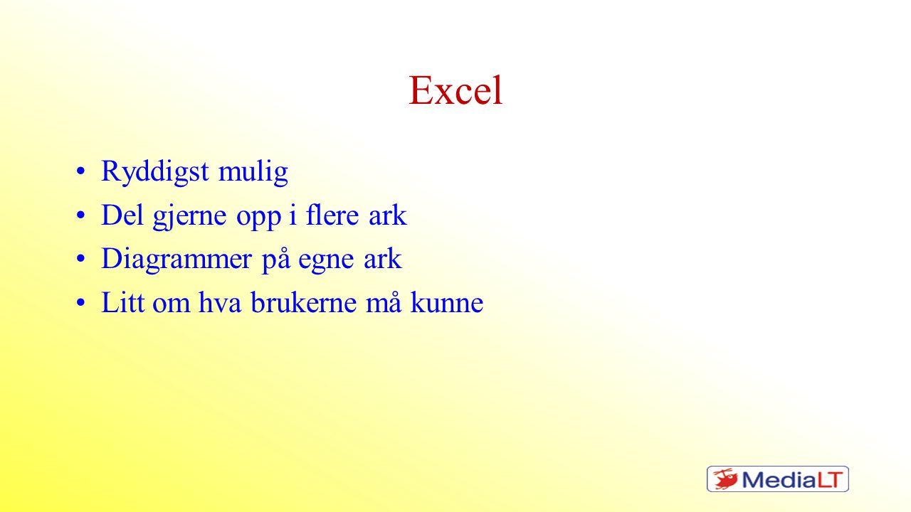 Excel •Ryddigst mulig •Del gjerne opp i flere ark •Diagrammer på egne ark •Litt om hva brukerne må kunne