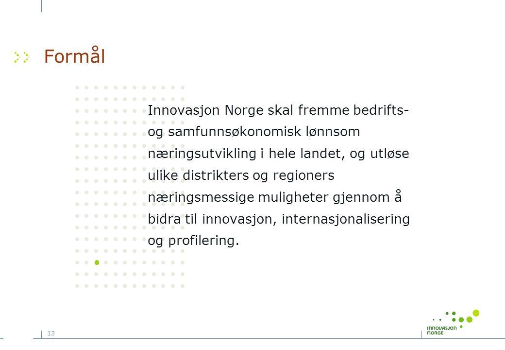 13 Formål Innovasjon Norge skal fremme bedrifts- og samfunnsøkonomisk lønnsom næringsutvikling i hele landet, og utløse ulike distrikters og regioners næringsmessige muligheter gjennom å bidra til innovasjon, internasjonalisering og profilering.
