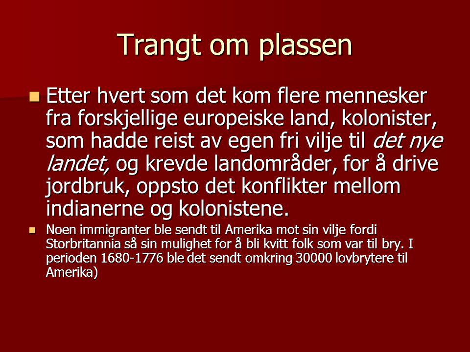 Trangt om plassen  Etter hvert som det kom flere mennesker fra forskjellige europeiske land, kolonister, som hadde reist av egen fri vilje til det ny