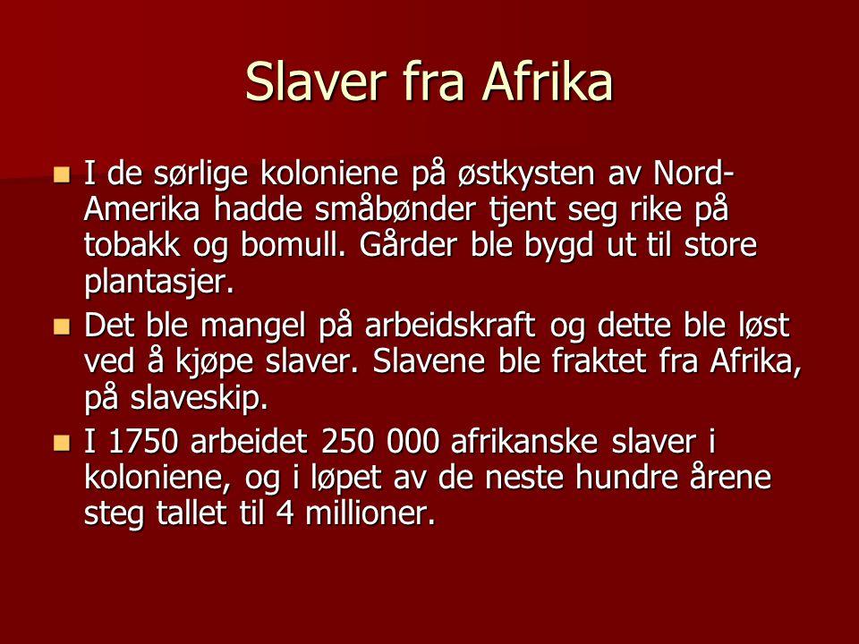 Slaver fra Afrika  I de sørlige koloniene på østkysten av Nord- Amerika hadde småbønder tjent seg rike på tobakk og bomull. Gårder ble bygd ut til st