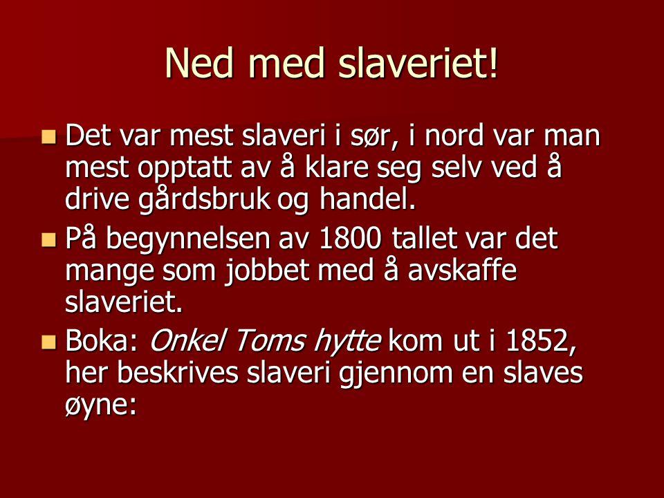Ned med slaveriet!  Det var mest slaveri i sør, i nord var man mest opptatt av å klare seg selv ved å drive gårdsbruk og handel.  På begynnelsen av