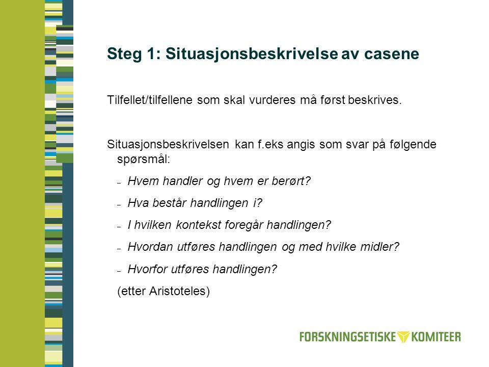 Steg 1: Situasjonsbeskrivelse av casene Tilfellet/tilfellene som skal vurderes må først beskrives. Situasjonsbeskrivelsen kan f.eks angis som svar på