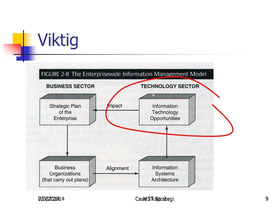 03.07.2014Case IT Strategi97/3/2014MS kap. 29 Viktig
