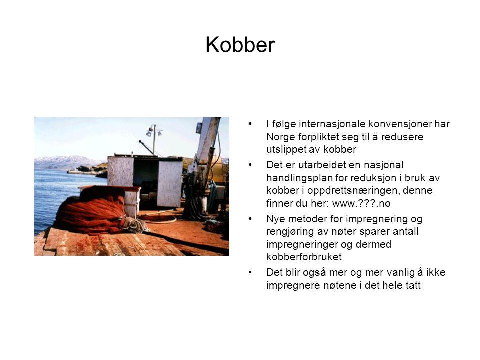 Kobber •I følge internasjonale konvensjoner har Norge forpliktet seg til å redusere utslippet av kobber •Det er utarbeidet en nasjonal handlingsplan f