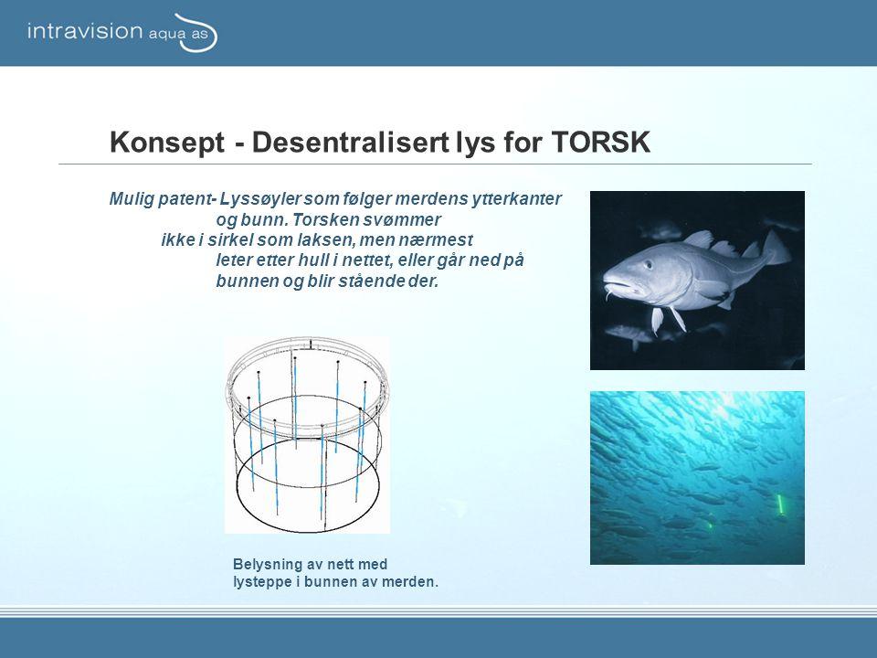 Konsept - Desentralisert lys for TORSK Mulig patent- Lyssøyler som følger merdens ytterkanter og bunn. Torsken svømmer ikke i sirkel som laksen, men n