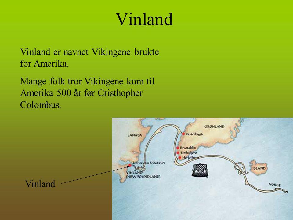 Vinland Vinland er navnet Vikingene brukte for Amerika. Mange folk tror Vikingene kom til Amerika 500 år før Cristhopher Colombus. Vinland