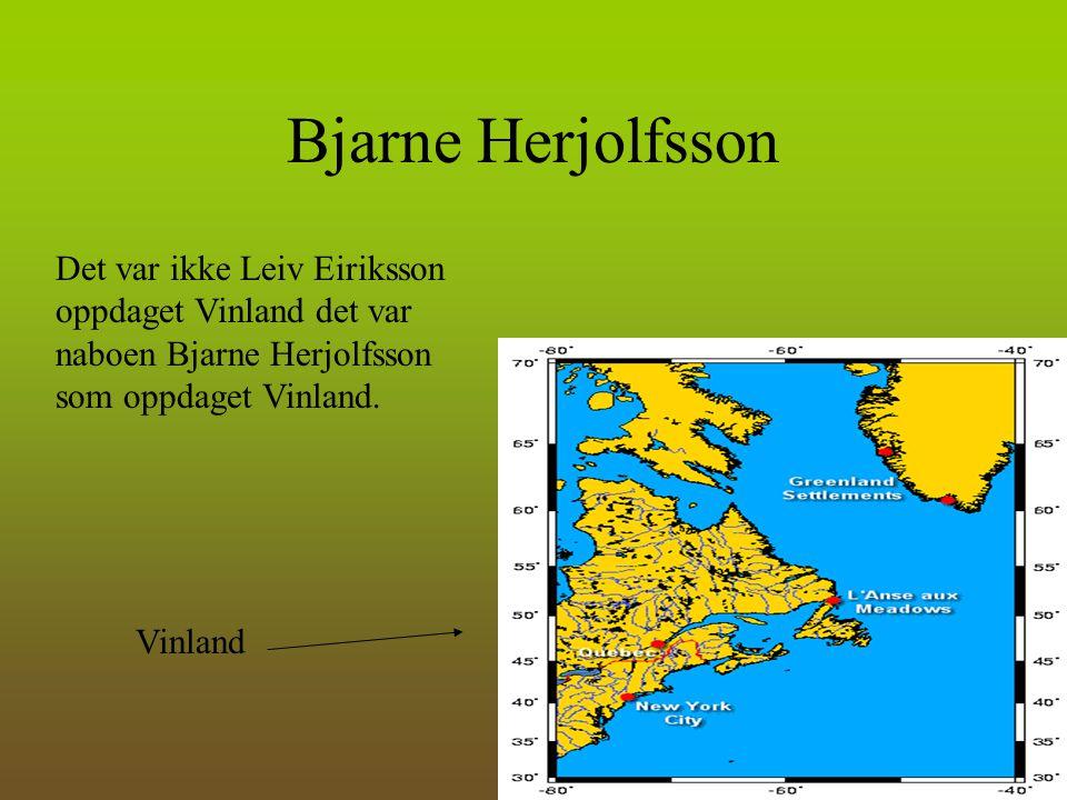 Bjarne Herjolfsson Det var ikke Leiv Eiriksson oppdaget Vinland det var naboen Bjarne Herjolfsson som oppdaget Vinland. Vinland