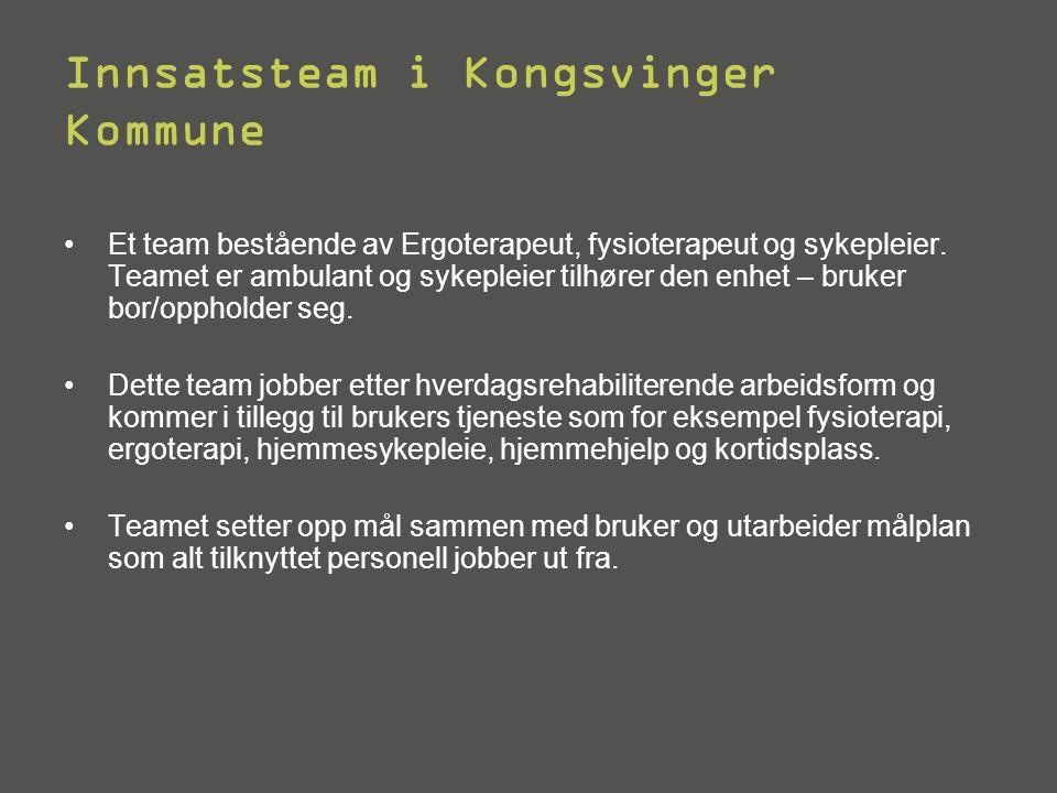 Innsatsteam i Kongsvinger Kommune •Et team bestående av Ergoterapeut, fysioterapeut og sykepleier.