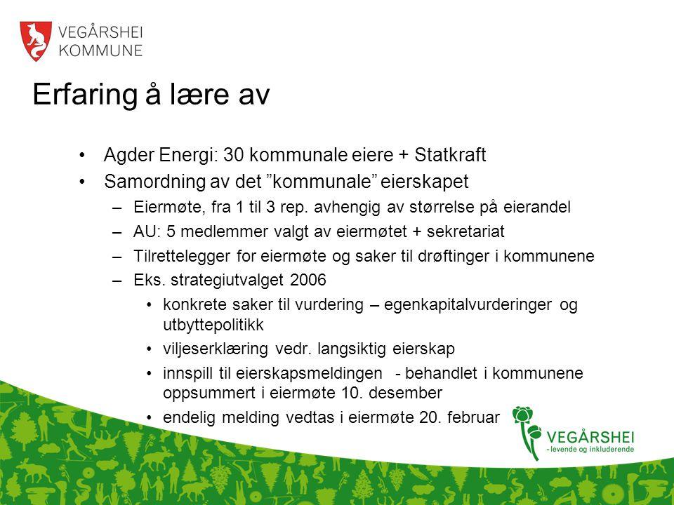 Erfaring å lære av •Agder Energi: 30 kommunale eiere + Statkraft •Samordning av det kommunale eierskapet –Eiermøte, fra 1 til 3 rep.