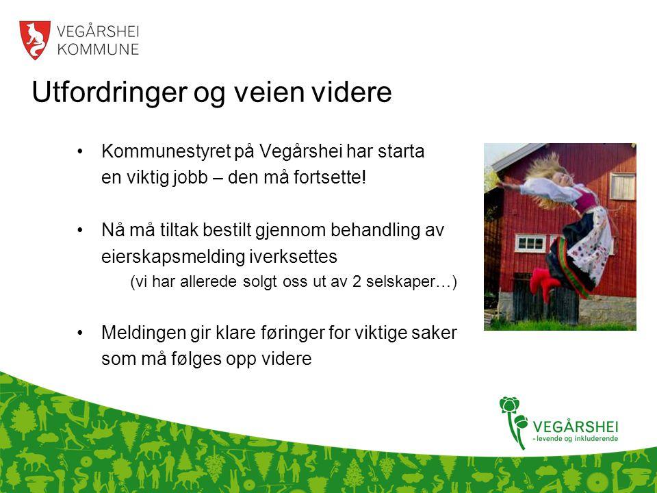 Utfordringer og veien videre •Kommunestyret på Vegårshei har starta en viktig jobb – den må fortsette.
