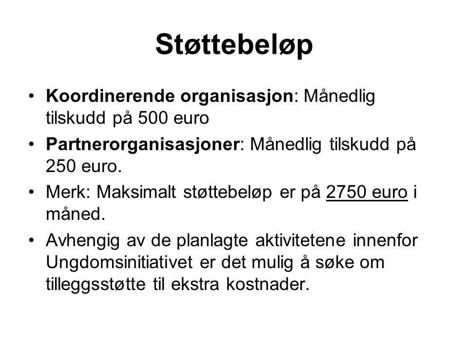 Støttebeløp •Koordinerende organisasjon: Månedlig tilskudd på 500 euro •Partnerorganisasjoner: Månedlig tilskudd på 250 euro.