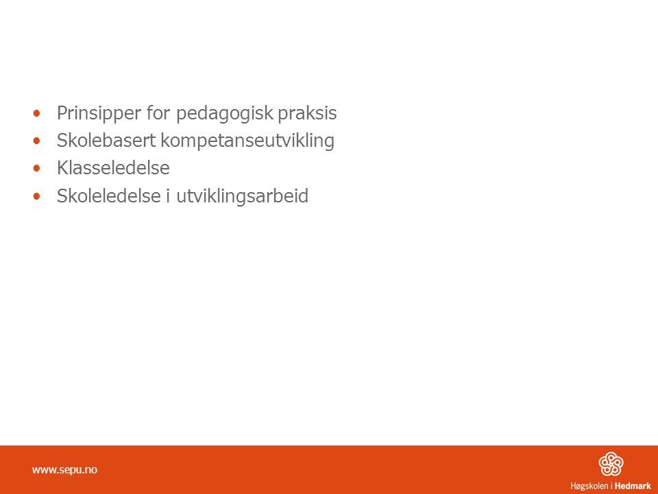 •Prinsipper for pedagogisk praksis •Skolebasert kompetanseutvikling •Klasseledelse •Skoleledelse i utviklingsarbeid www.sepu.no
