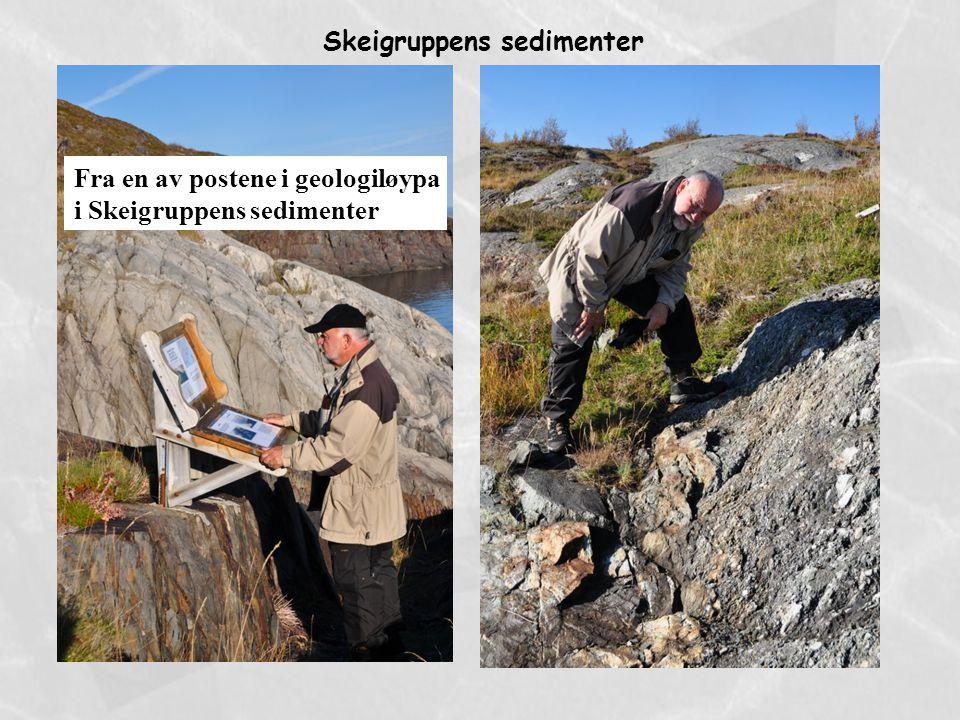 Fra en av postene i geologiløypa i Skeigruppens sedimenter Skeigruppens sedimenter