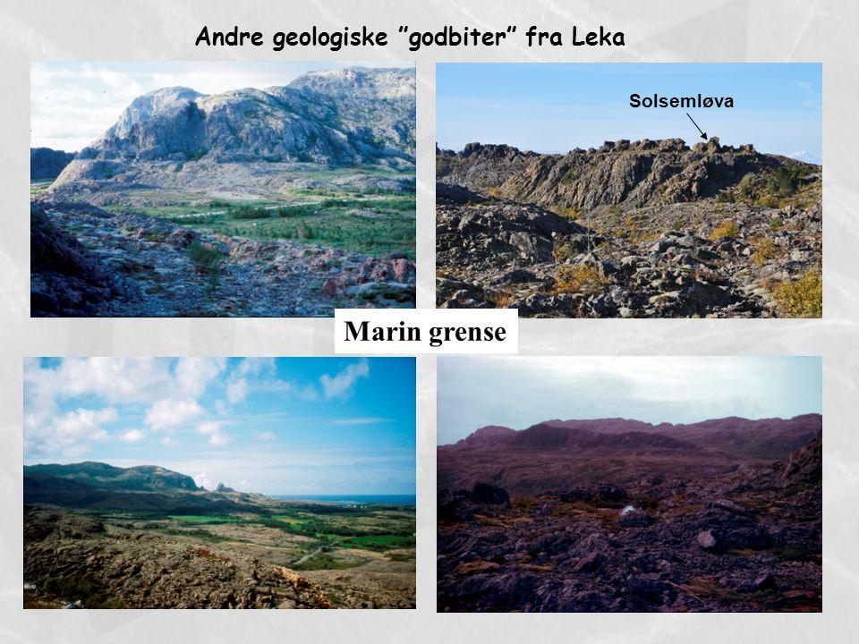 """Marin grense Andre geologiske """"godbiter"""" fra Leka Solsemløva"""